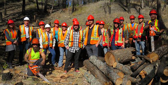 Cranbrook forestry boot camp seeds work experience for 24